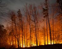 Waarschuwing natuurbranden