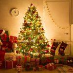 Brandveilige kerstboom: hoe goed brandt de kerstboom? (video)