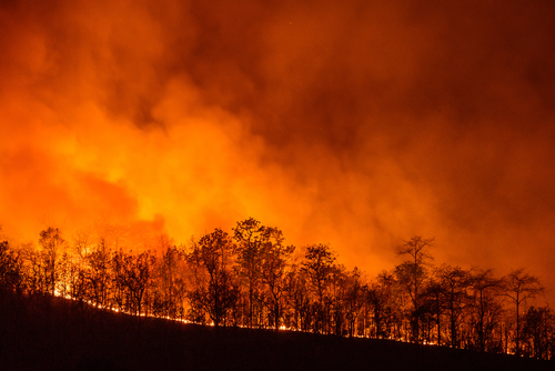 Aanduiding natuurbranden