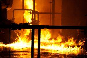 brand dierentuin Engeland